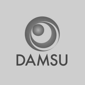 DAMSU